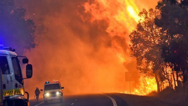 Dikritik, PM Marrison Berlibur Saat Australia Dikepung Api,