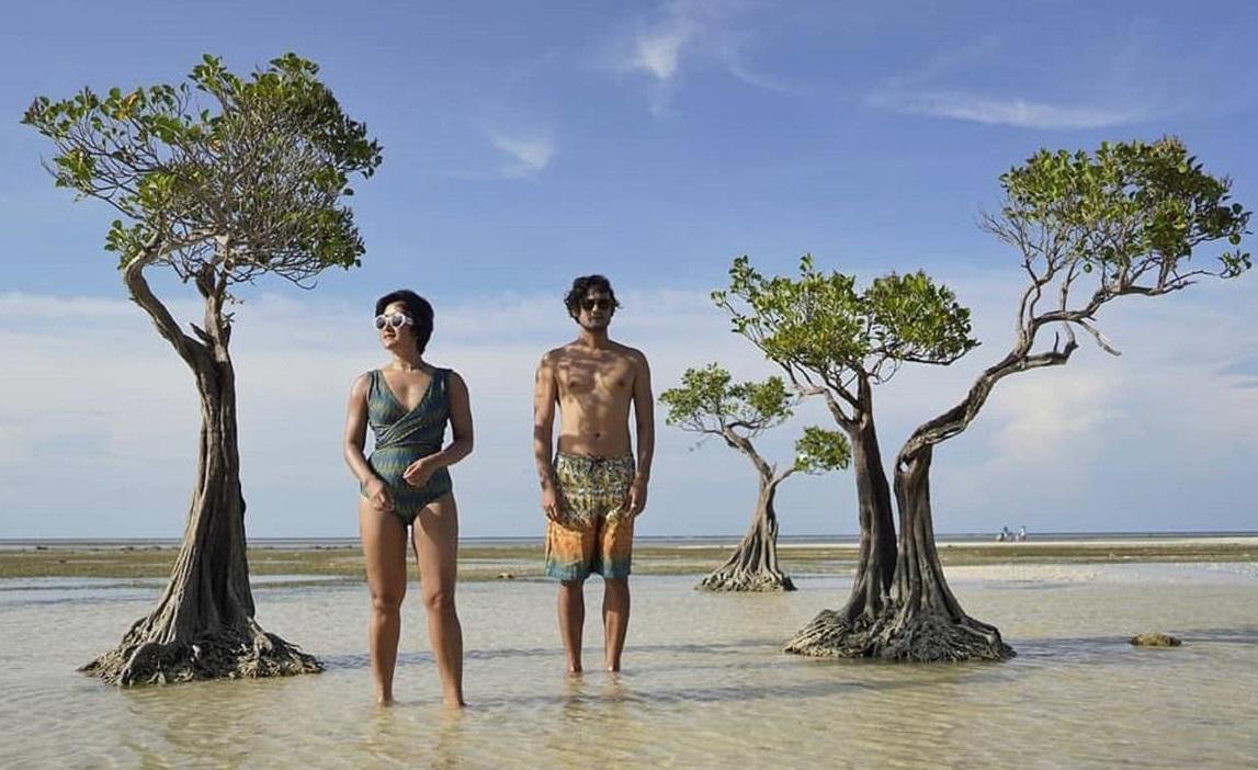 Widi: Puluhan Pohon Bakau Kerdil di Pantai Walakiri Hilang