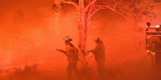 28 Petugas Pemadam Kebakaran Tewas Saat Padamkan Hutan Australia
