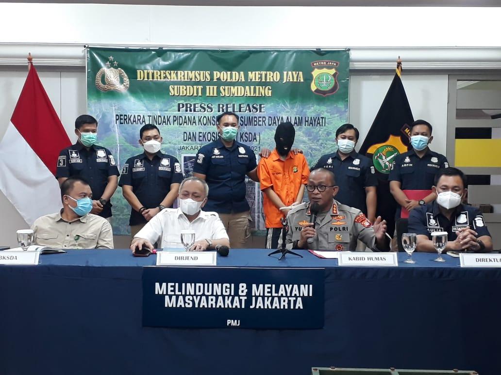 Subdit Sumdaling Polda Metro Amankan Pelaku Penjualan Satwa Dilindungi