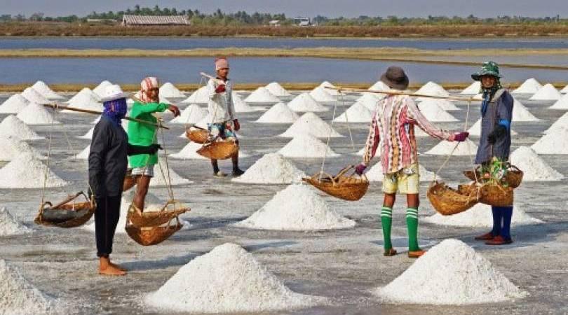 Serapan Garam Lokal oleh Industri Melonjak