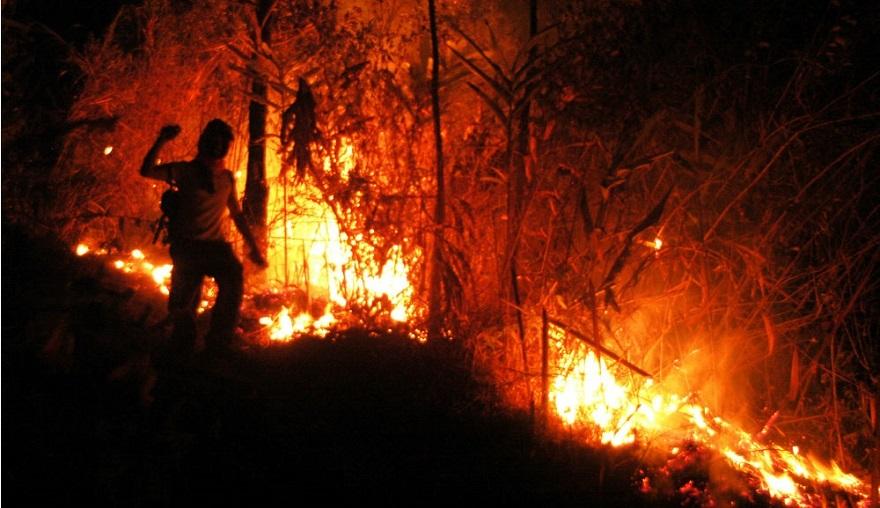 7 Turis Singapura Terjebak Kebakaran Gunung Raung