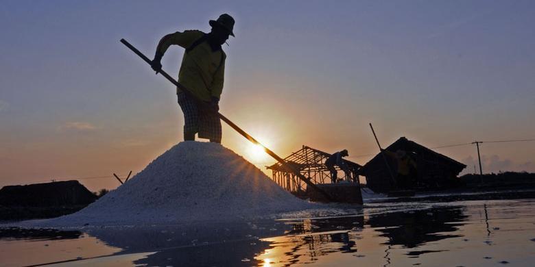 Wakil Rakyat Pamekasan Sikapi Polemik Impor Garam