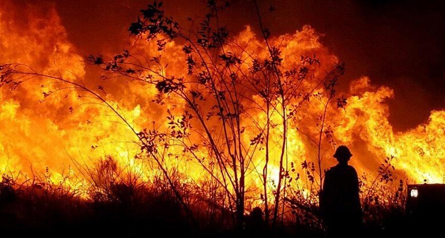 Pulau Wisata Spanyol Dilalap Api, Turis Dievakuasi